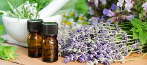 в ароматерапии используются целебные травы